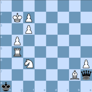 Chess Workout Stalemate Trap