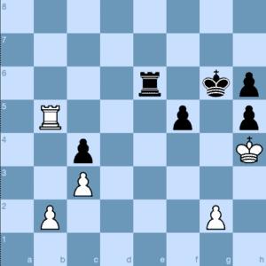 Vishy Anand - Magnus Carlsen