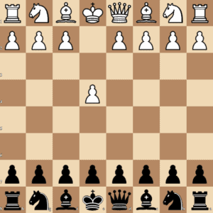e4 Chess Notation Black Perspective