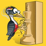 Image of The Woodpecker Method