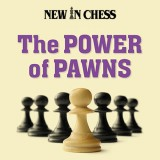 Image of The Power of Pawns: Chess Structures Fundamentals for Post-Beginners