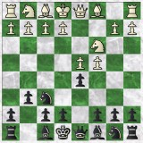 Image of A Master's Guide to the Grunfeld vs 1.d4 & 1.Nf3