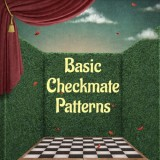 Basic Checkmate Patterns