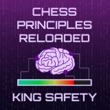 Chess Principles Reloaded - King Safety