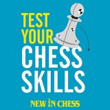 Image of Test Your Chess Skills